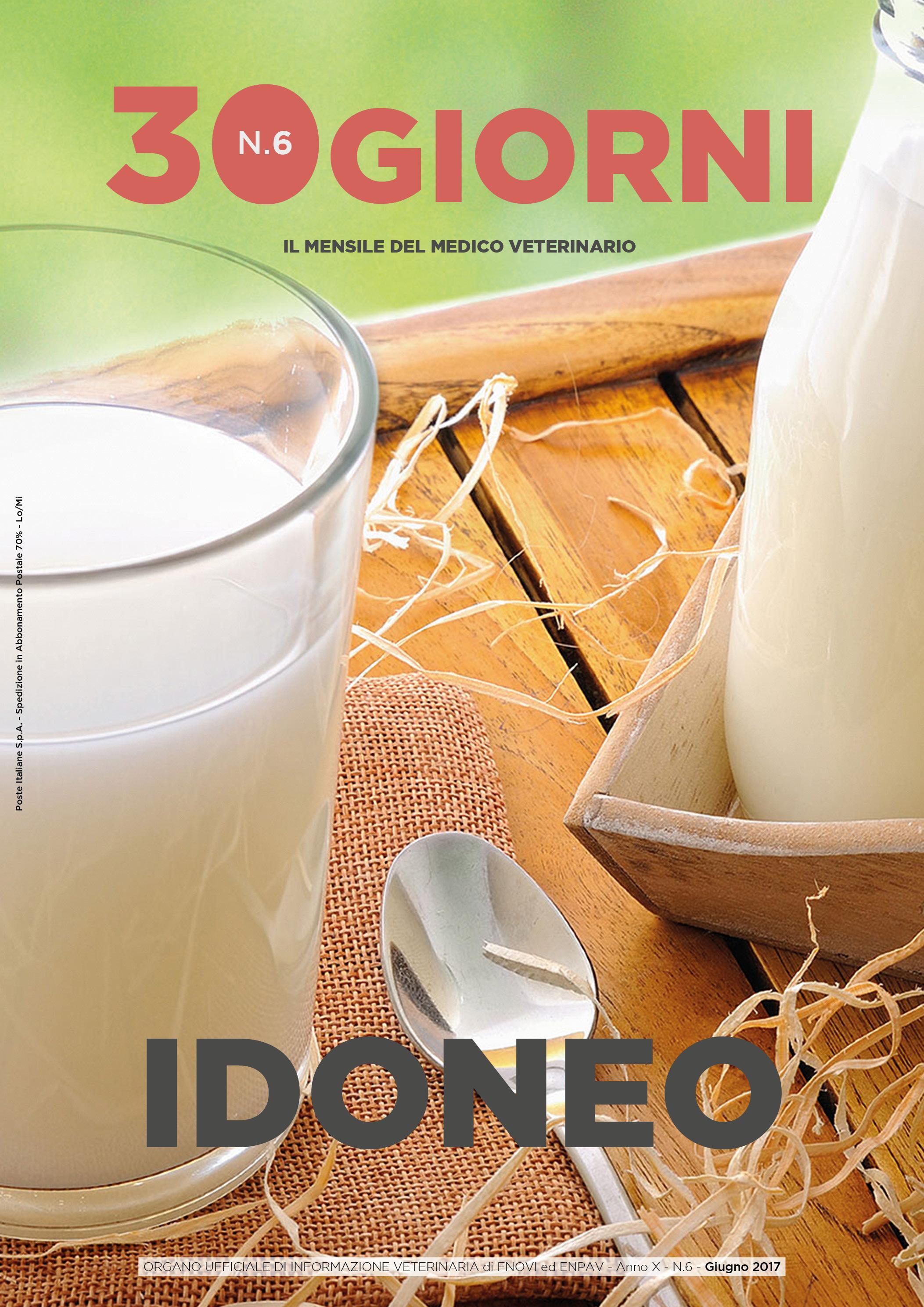 copertina FNOVI giugno 2017.jpg