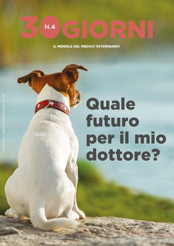 copertina_FNOVI aprile 2018.jpg